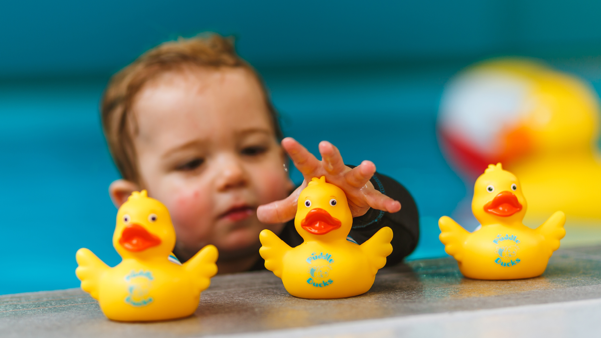 Puddle Ducks provide expert comment on radio