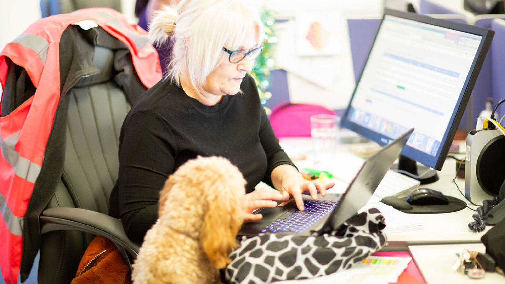 Guardian Angel Carers is using world-class IT to make life easier for franchisees.