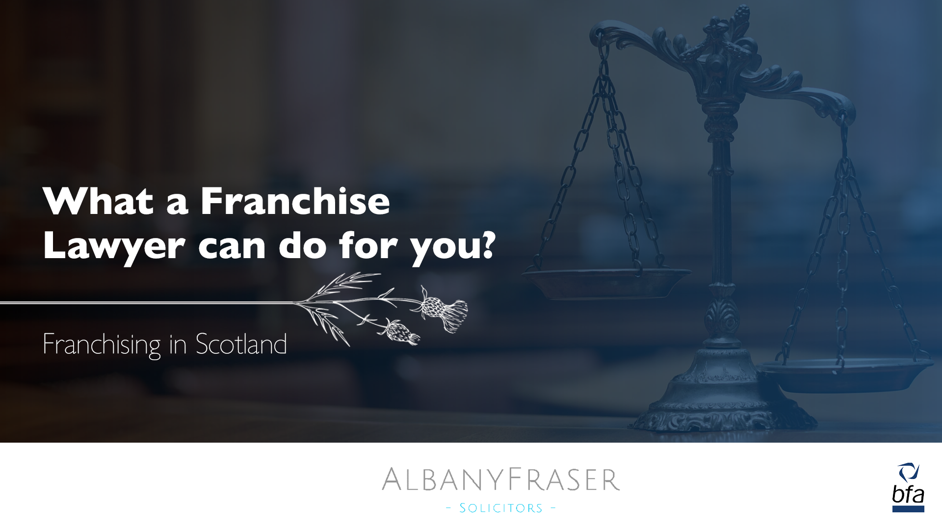 What a Franchise Lawyer can do for you?